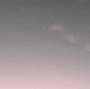 Venus rising 27-10-13