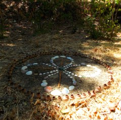 Sacred Circle in the beech grove in my garden.