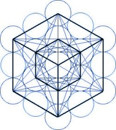 Metatron's Cube on the Fruit of Life; physical light body (the baby self) 'built' with the INception of higher Light/Christing energies into the cells.