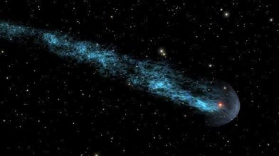 Mira, red star/seed within the shielding bow, with a blue-white 13 light year tail.
