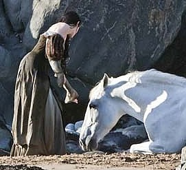 Snow White is saved by a white mare, who perishes in the forest (the Mother is weakened) but is respired when Snow White later rides a white horse to victory.