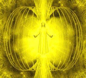 universal-torus-lightbody-copy