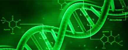 epigenetics_banner