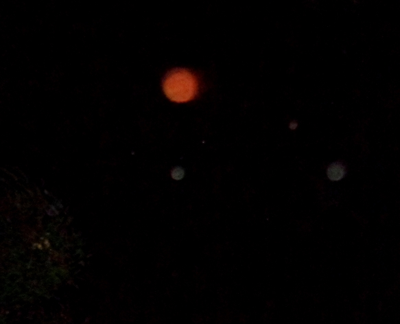 Antarian star family projecting their light energies as a red orb, with green Arcturian companions, Jan. 7, 2016.
