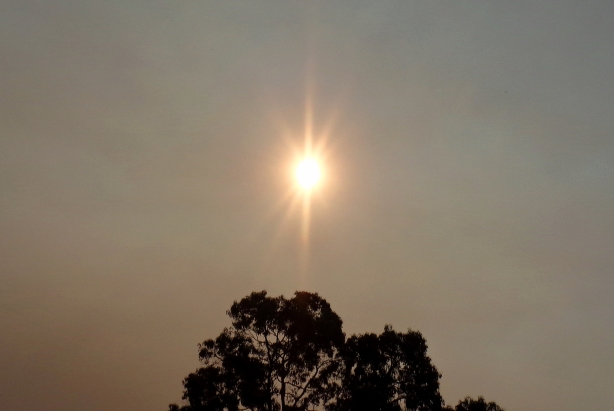 Sun appeared 'rose-gold-rayed' through smoke on November 4th, 2016.