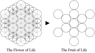 fruitoflife