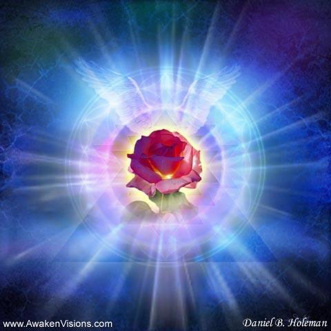 Divine Heart Rose