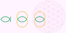http://www.dreamstime.com/stock-images-vesica-piscis-flower-life-shape-can-be-derived-bladder-fish-latin-also-called-mandorla-italian-means-image43114354