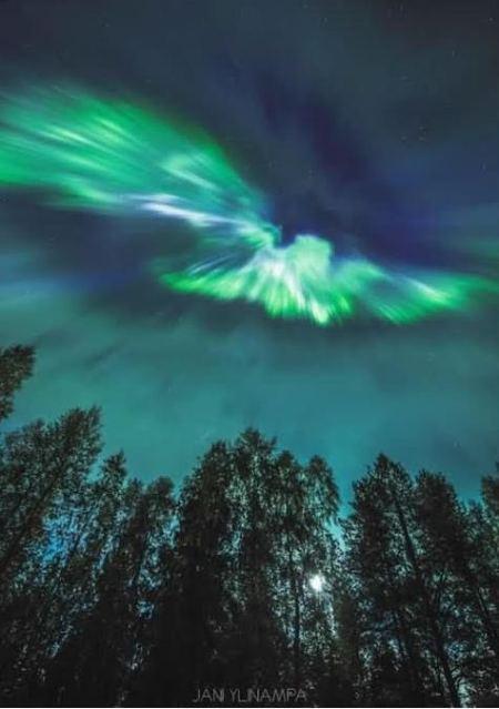 jani ylinampa 7-9-17 finland - Copy