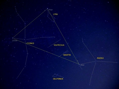 small-constellations-vulpecula-sagitta-delphinus - copy