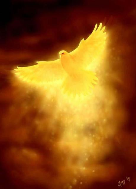 dove-of-gold-light.jpg?w=230&h=319&zoom=2&profile=RESIZE_710x