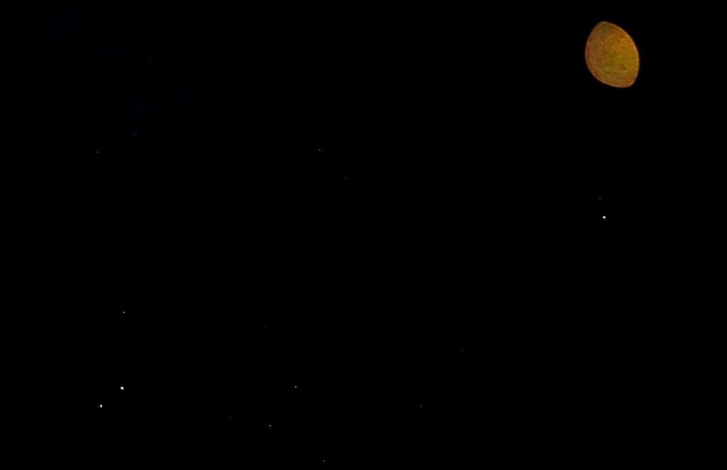 Christmas Sirius Star Directly Overhead 2020 lunar eclipse   Heart Star
